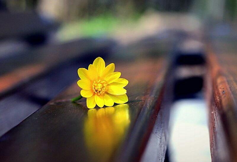 متن زیبایی در مورد رسیدن به سعادت و آرامش  ابدی