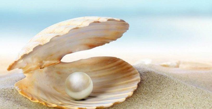 40 توصیه معنوی از دیدگاه سوامی شیواناندا