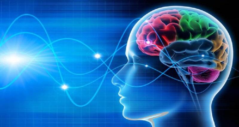Photo of امواج مغزی چه هستند؟
